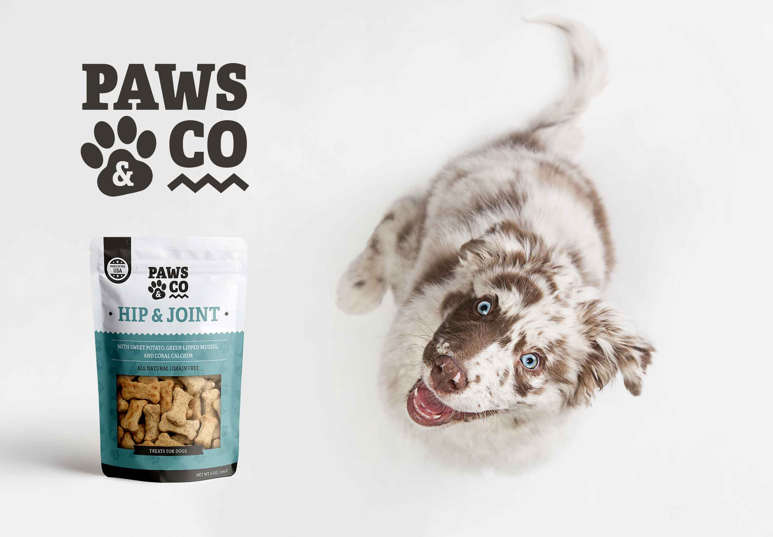 Paws & Co Ad