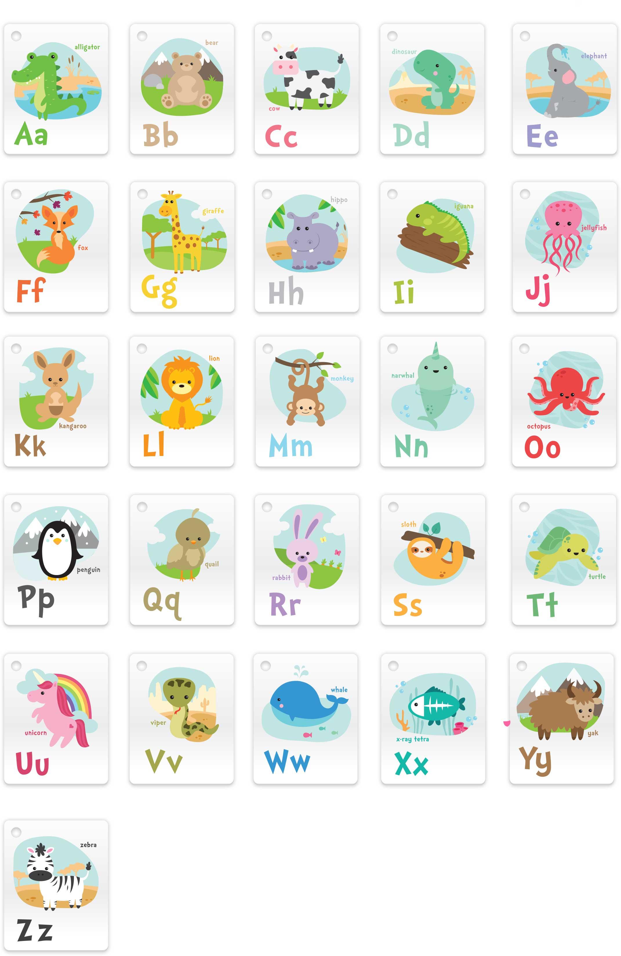 Splash Cards - Learn Letter Cards